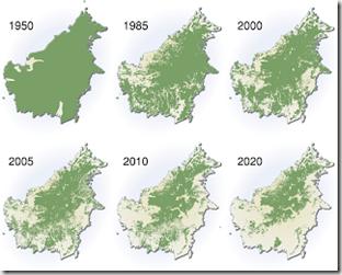 Déforestation de Bornéo au fil des années